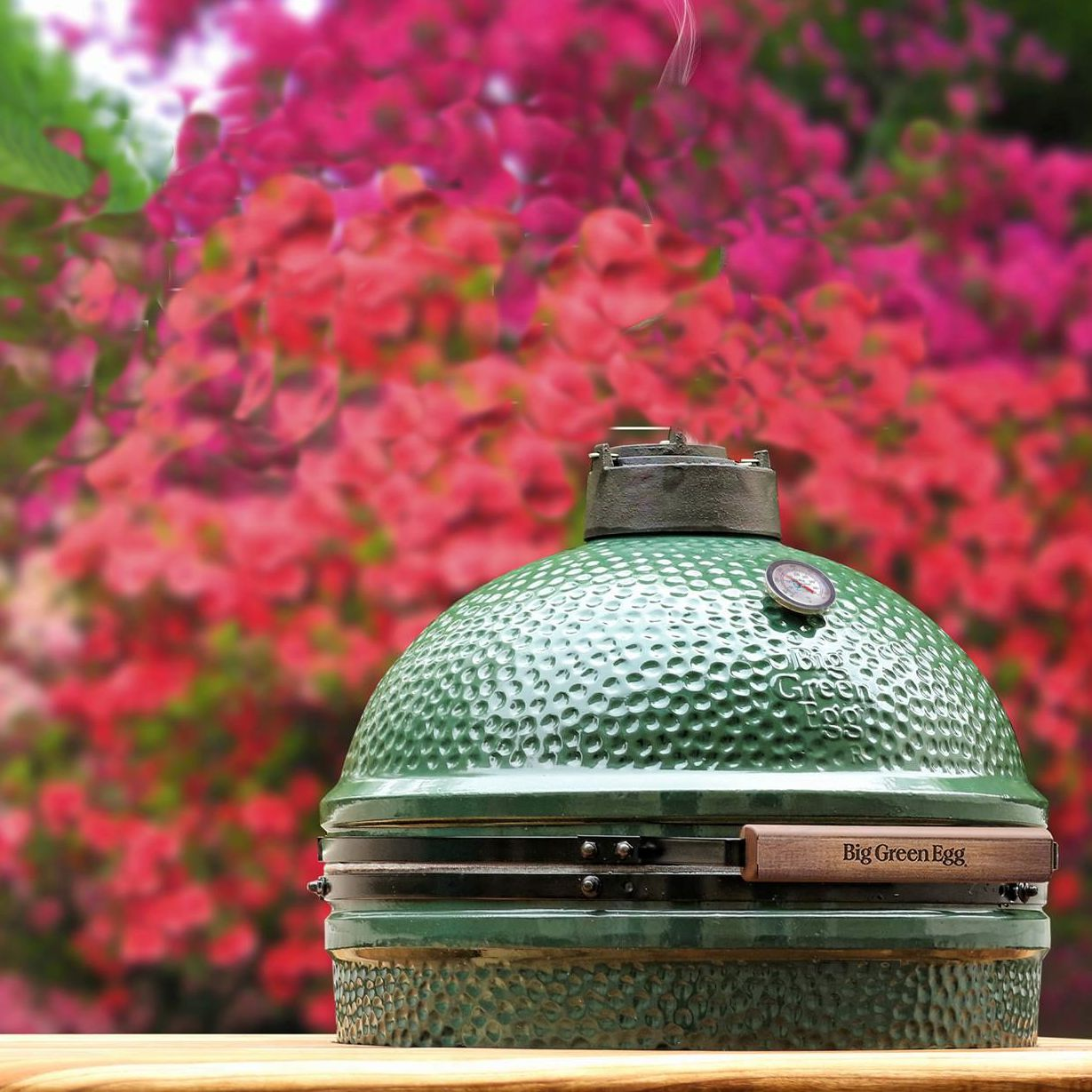 Big GreenEgg